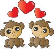 Dois macacos adoráveis no amor fotos de stock