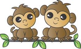 Dois macacos adoráveis que sentam-se em um ramo foto de stock royalty free