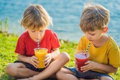 Dois meninos bebem batidos saud?veis contra o contexto das palmeiras Batidos da manga e da melancia Nutri??o saud?vel imagens de stock royalty free