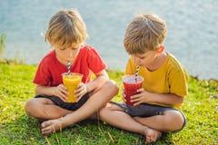 Dois meninos bebem batidos saud?veis contra o contexto das palmeiras Batidos da manga e da melancia Nutri??o saud?vel imagem de stock royalty free