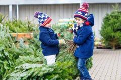 Dois meninos da criança que compram a árvore de Natal na loja exterior Fotografia de Stock