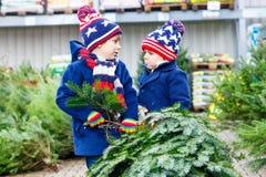 Dois meninos da criança que compram a árvore de Natal na loja exterior Imagens de Stock Royalty Free