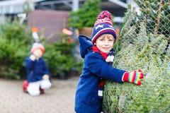 Dois meninos da criança que compram a árvore de Natal na loja exterior Imagem de Stock