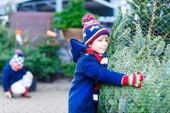 Dois meninos da criança que compram a árvore de Natal na loja exterior Fotografia de Stock Royalty Free