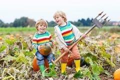 Dois meninos das crianças que sentam-se em abóboras grandes no remendo Fotografia de Stock