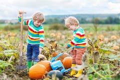 Dois meninos das crianças que sentam-se em abóboras grandes no remendo Foto de Stock Royalty Free