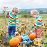 Dois meninos das crianças que sentam-se em abóboras grandes no remendo Fotografia de Stock Royalty Free