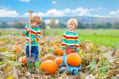 Dois meninos das crianças que sentam-se em abóboras grandes no remendo Imagens de Stock Royalty Free