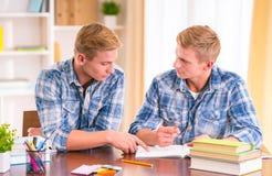 Dois meninos gêmeos Foto de Stock