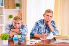 Dois meninos gêmeos Imagens de Stock Royalty Free