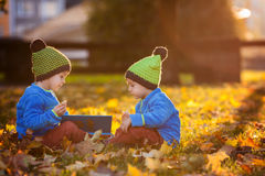 Dois meninos, lendo um livro em um gramado na tarde Imagem de Stock