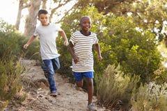 Dois meninos novos felizes que correm abaixo de um trajeto de floresta imagem de stock