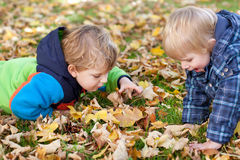 Dois meninos pequenos da criança no parque do outono Fotografia de Stock Royalty Free