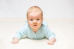 Dois meses de bebê idoso Fotos de Stock Royalty Free