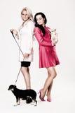 Dois modelos de forma novos com seus cães pequenos Imagem de Stock Royalty Free