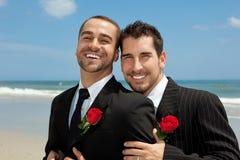 Dois noivos alegres Fotografia de Stock Royalty Free