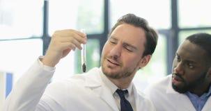 Dois o cientista Men Analyzing Liquid no tubo de ensaio em pesquisadores modernos do laboratório discute a experiência no laborat vídeos de arquivo