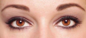 Dois olhos Imagens de Stock Royalty Free
