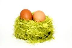 Dois ovos em um jaque Imagem de Stock Royalty Free