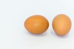 Dois ovos são isolados Imagem de Stock