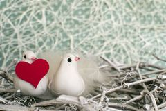 Dois pássaros brancos pequenos no ninho com coração vermelho no tempo de inverno Foto de Stock Royalty Free