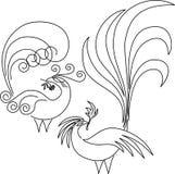 Dois pássaros do paraíso. Imagens de Stock