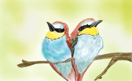 Dois pássaros irritados fotos de stock royalty free