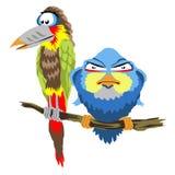 Pássaros que sentam-se no ramo Fotos de Stock Royalty Free