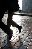Dois pés Fotografia de Stock Royalty Free
