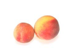 Dois pêssegos Fotografia de Stock