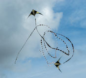 Dois papagaios que voam no céu Imagem de Stock Royalty Free