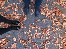 Dois pares de pés em sapatas lustrosas lisas de couro pretas bonitas em amarelas e no vermelho, folhas de outono naturais de cor  foto de stock