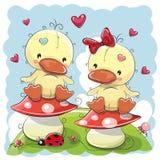Dois patos bonitos dos desenhos animados ilustração royalty free