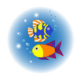 Dois peixes Fotografia de Stock Royalty Free