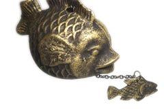 Dois peixes de bronze Fotos de Stock