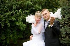 Dois pombos brancos Imagens de Stock Royalty Free