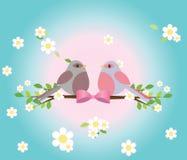 Dois pombos em um branc da árvore Ilustração Stock