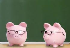 Dois porcos cor-de-rosa com vidros Imagens de Stock
