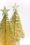 Dois pouca árvore de abeto do ouro foto de stock royalty free