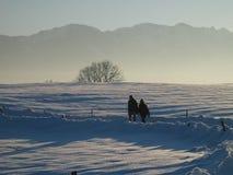 Dois povos que andam na paisagem só da neve e da montanha imagens de stock royalty free