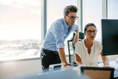 Dois profissionais incorporados que trabalham junto no computador Fotos de Stock