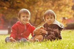 Dois rapazes pequenos bonitos com o urso de peluche no parque Fotografia de Stock Royalty Free