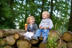 Dois rapazes pequenos que riem e que comem a maçã na floresta do verão Imagens de Stock