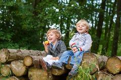 Dois rapazes pequenos que riem e que comem a maçã na floresta do verão Imagem de Stock