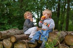 Dois rapazes pequenos que riem e que comem a maçã na floresta do verão Fotos de Stock