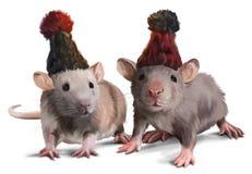 Dois ratos que vestem chapéus Fotografia de Stock Royalty Free