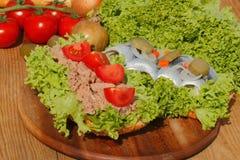 Dois rolos dos peixes com atum e os arenques ácidos Imagens de Stock