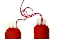 dois sacos enchidos com o sangue fresco fotografia de stock
