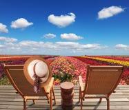 Dois salas de estar do chaise e chapéus de palha Fotografia de Stock