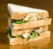 Dois sanduíches Imagem de Stock